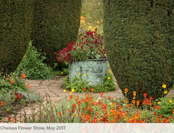 Chelsea Flower Show & Country Gardens - Carex Tours