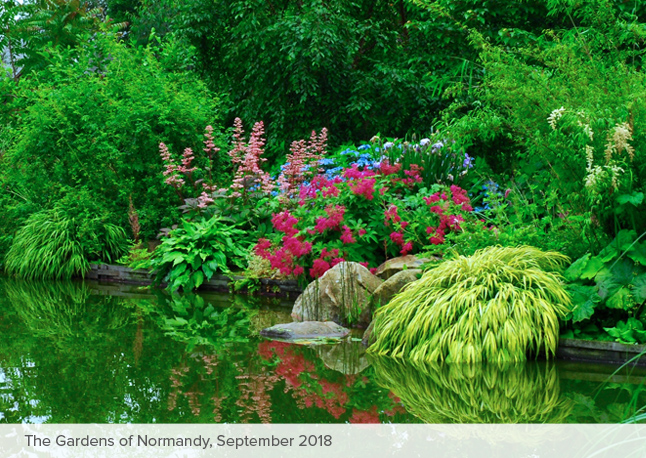 Visit The Gardens Of Normandy With Carextours