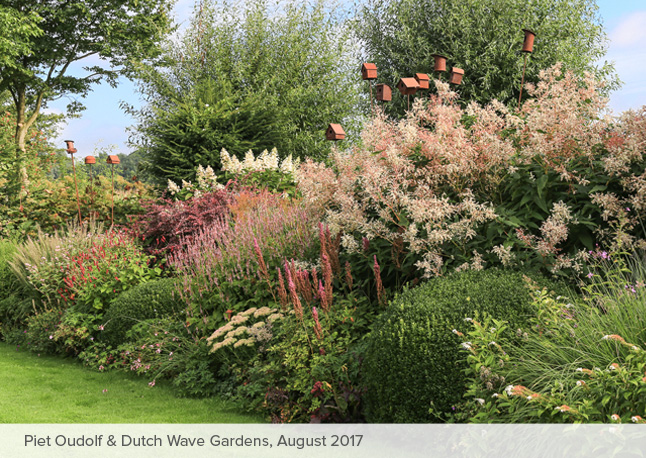 Piet Oudolf Dutch Wave Gardens Tour 2017 Carextours