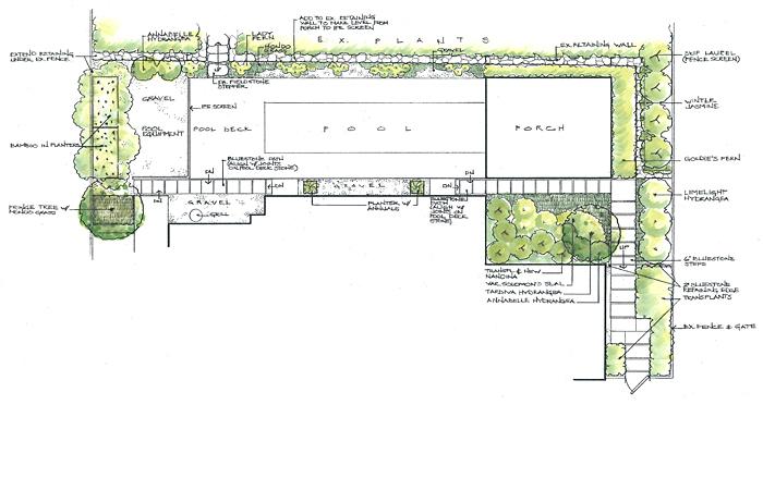 garden design - Garden Design By Carolyn Mullet